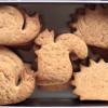 Biscotti di prova