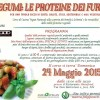 Corso di cucina naturale: I legumi, SPECIALE ESTATE!