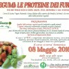 I legumi, le proteine dei Furbi!!